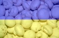 Количество производителей шампиньона в Украине и объем выращенного гриба