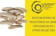 Программа по вешенке и экзотических грибах на Днях Украинского Грибоводства