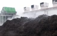Микоген уверенно сохраняет лидерство на рынке мицелиевого компоста для шампиньона в Украине