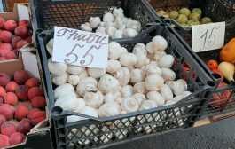 На грибном рынке все стабильно