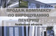 Пропонується до продажу готовий бізнес з вирощування шампіньйонів у Львівській області. Підходить для фінансування за державною програмою доступних кредитів 5-7-9%!