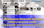 Получите бесплатно плакат о грибных болезнях