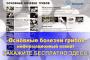 Обзор рынка гриба за 14 августа: локальное снижение цены по Украине, слабая торговля