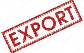 Россия в 2020 году в три раза увеличила экспорт шампиньонов