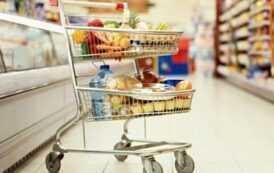 Участники грибного рынка отмечают изменение покупательского поведения в последние 2 года