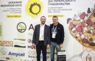 Дни Украинского Грибоводства собрали 350 участников из 20 стран